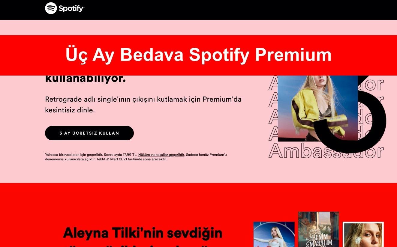 uc ay bedava spotify premium